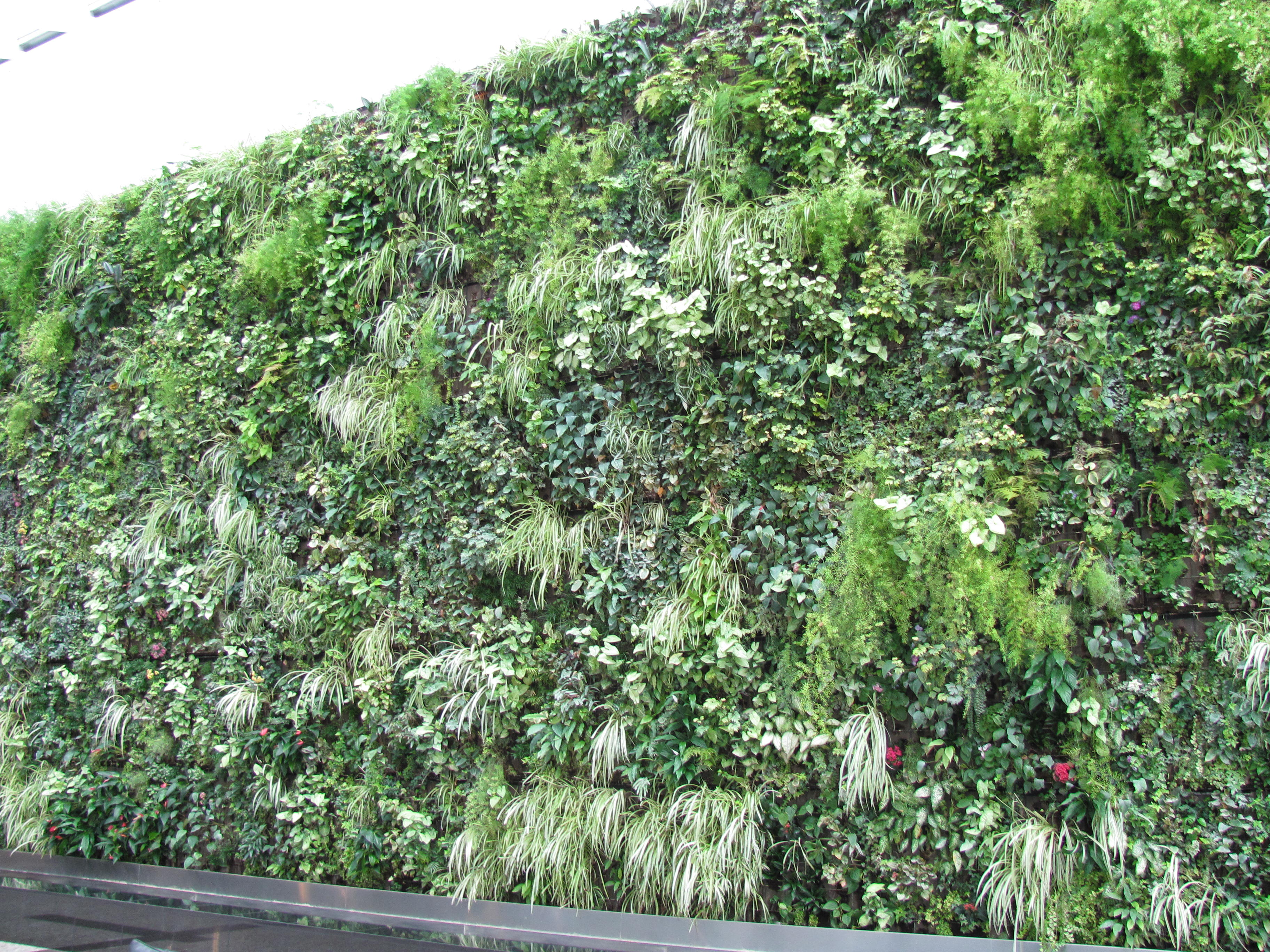 Living wall flowery prose for Living wall texture