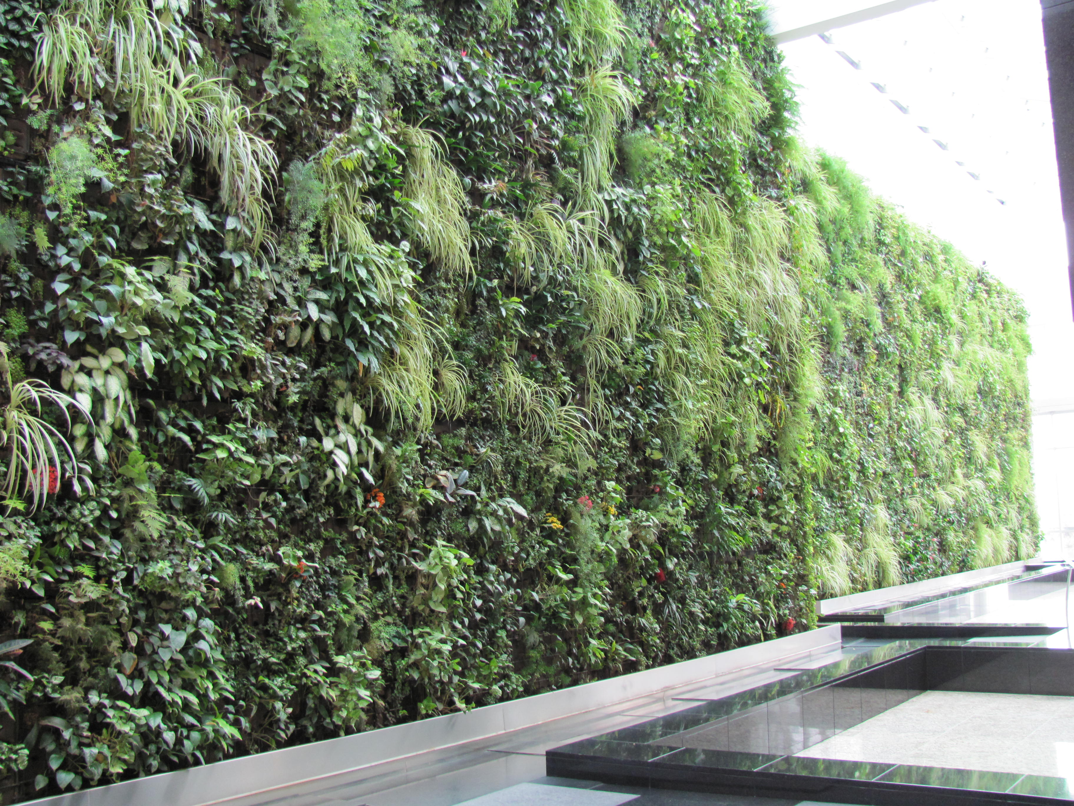 Living wall flowery prose for Wall plants outdoor