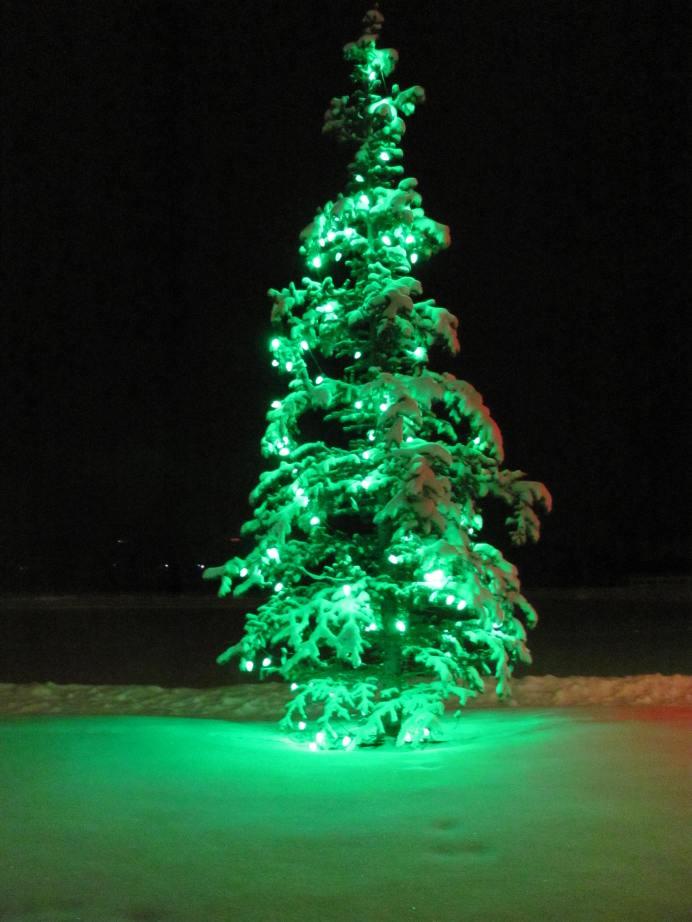 X-mas lights Spruce Meadows 11 December 2011