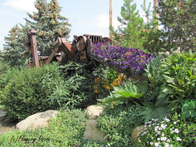 Threshing machine planter - Saskatoon Farm - Aug 12 FP
