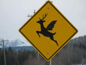Winged deer sign - Bragg Creek - 8 April 2014
