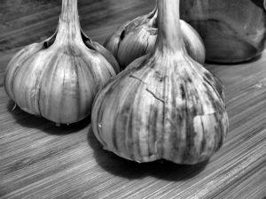 Garlic B&W