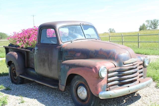 Petunia truck
