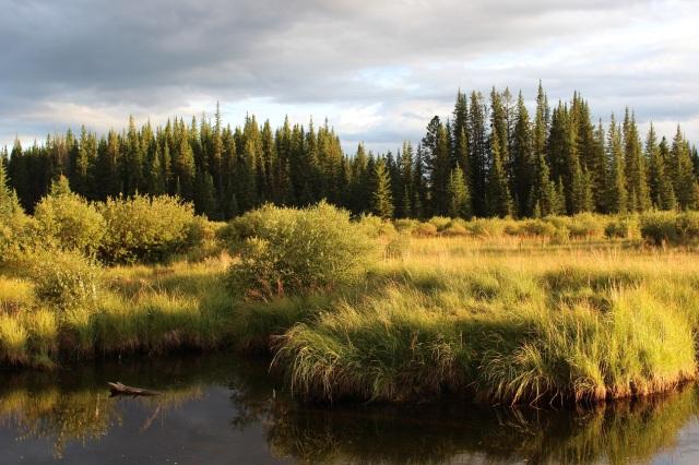 Shunda Creek RS