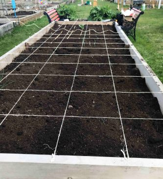 Bed- ICG- Square Foot Grid- May Long Weekend- 2020